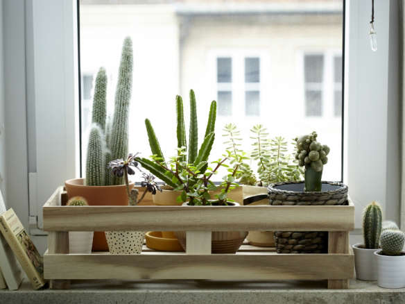picks 10 ikea favorites for indoor gardens