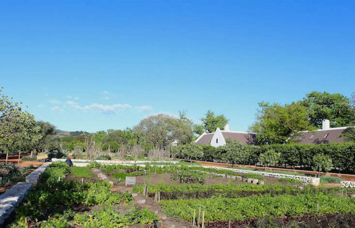 garden1_marie viljoen-babylonstoren-gardenista
