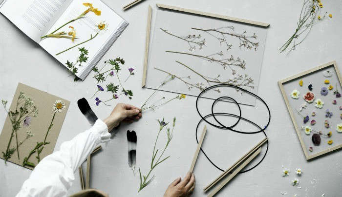 Diy Pressed Flowers No Fuss Art Frames From Copenhagen Gardenista