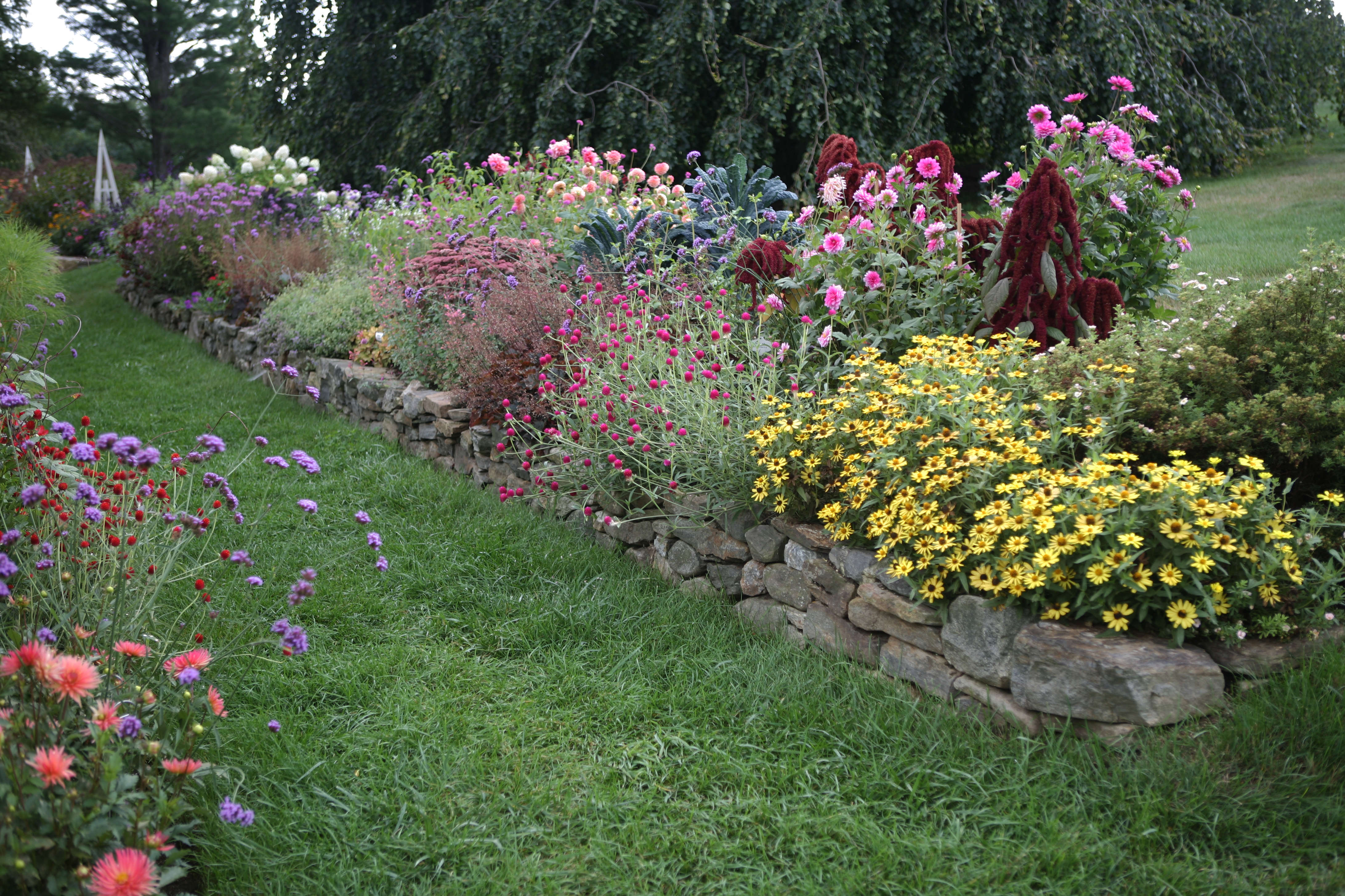 Flower Borders 10 Essential Tips From White Flower Farms Barb