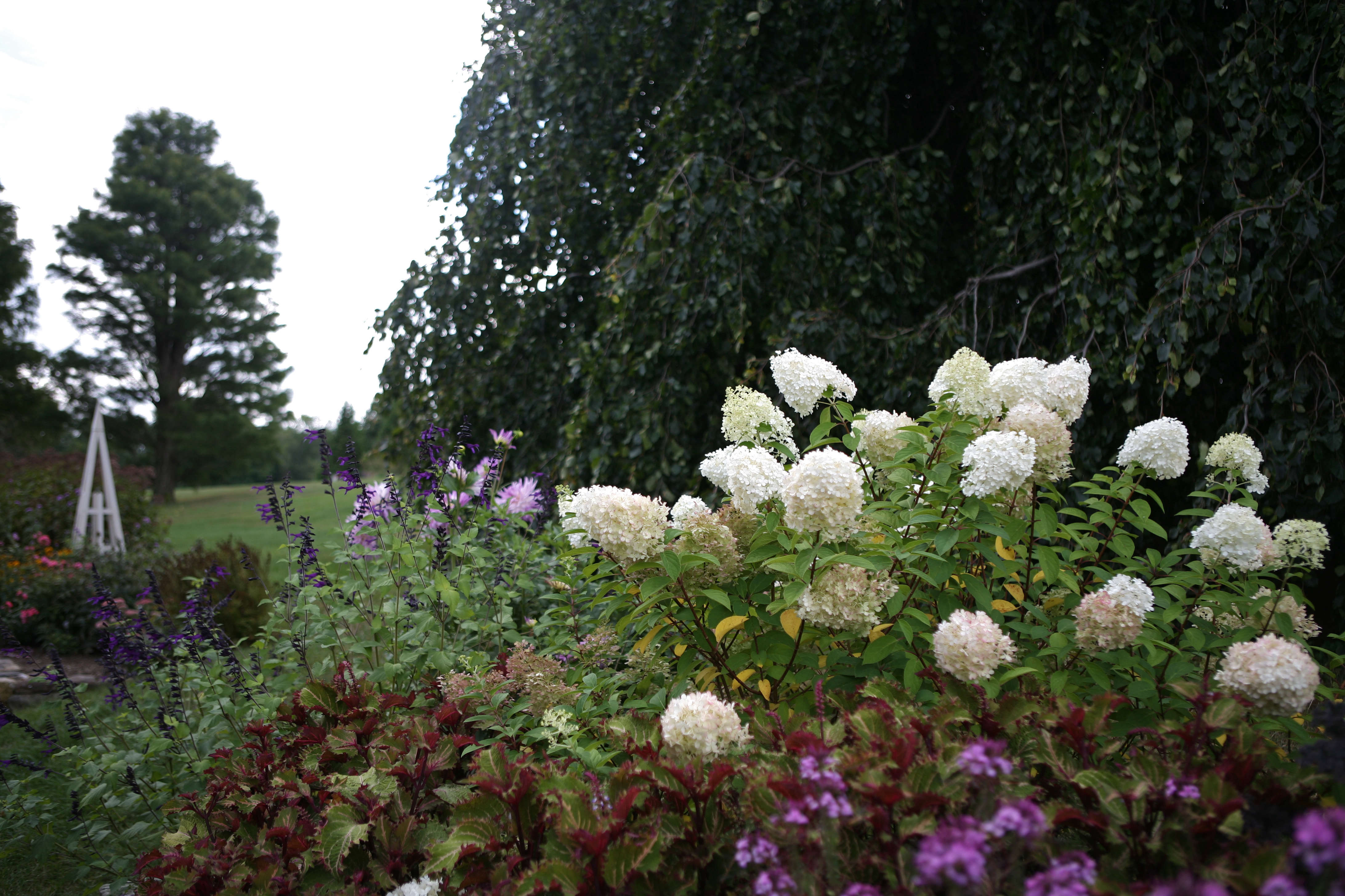 Flower borders 10 essential tips from white flower farms barb 8 extend the season mightylinksfo