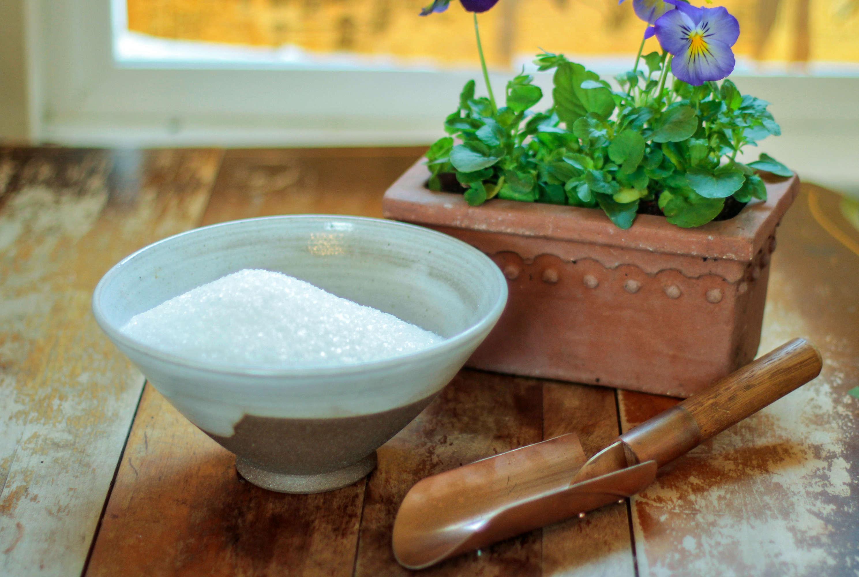 Gardening 101: How to Add Epsom Salts to Soil - Gardenista