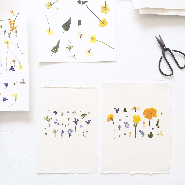 Pressed flower artworks from mr studio london gardenista pressed flower artworks from mr studio london mightylinksfo