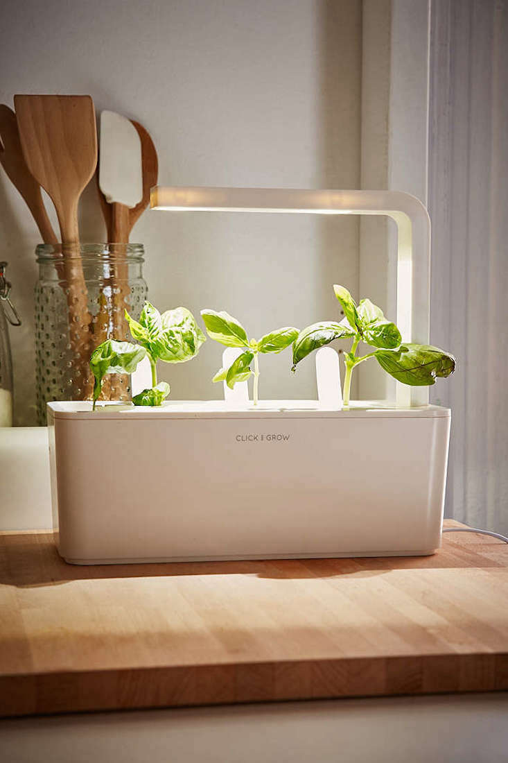 Click and Grow: A Miniature Herb Garden for a Kitchen Countertop  Gardenista