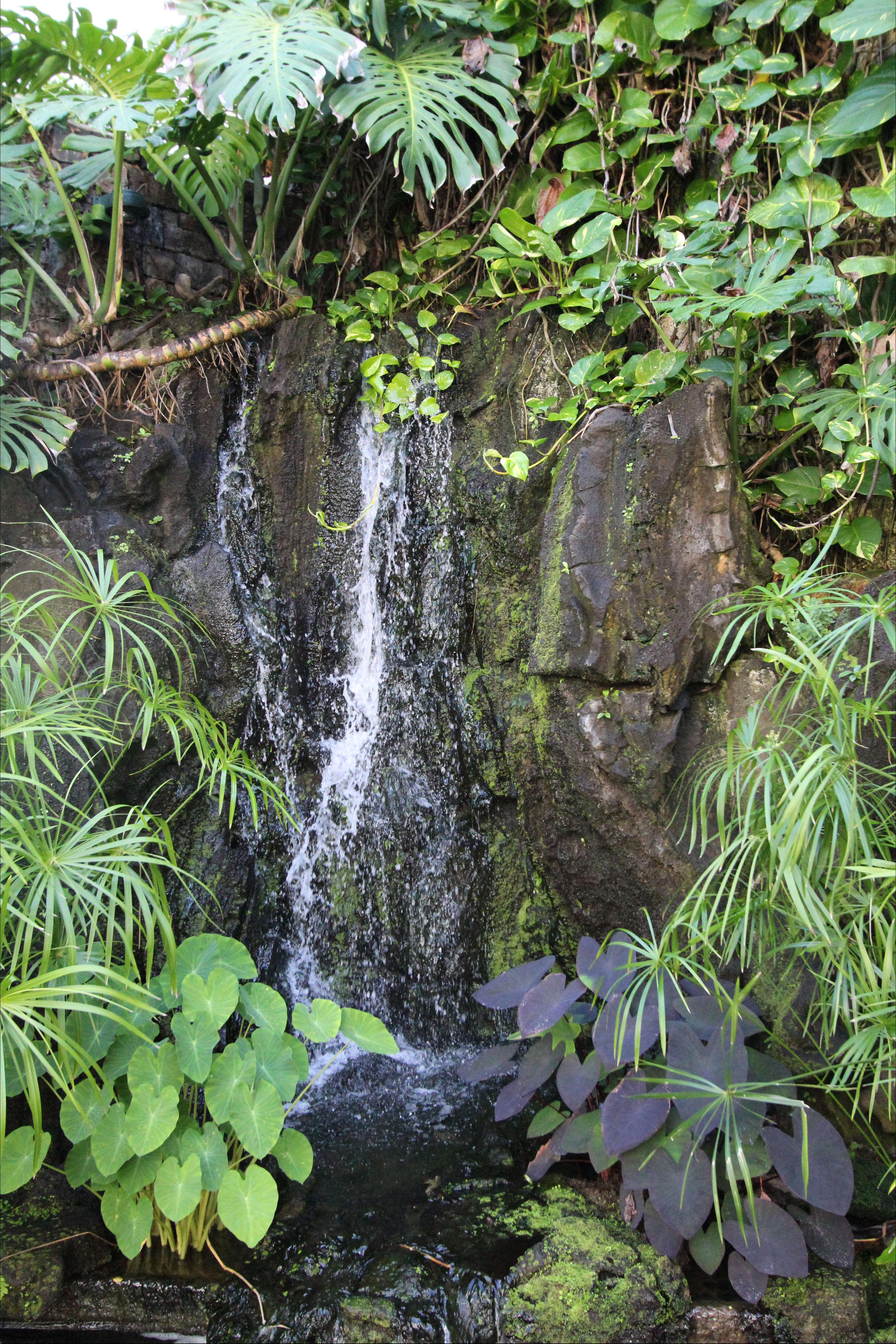 Garden Visit Heiress Doris Duke And Her Hawaiian Shangri