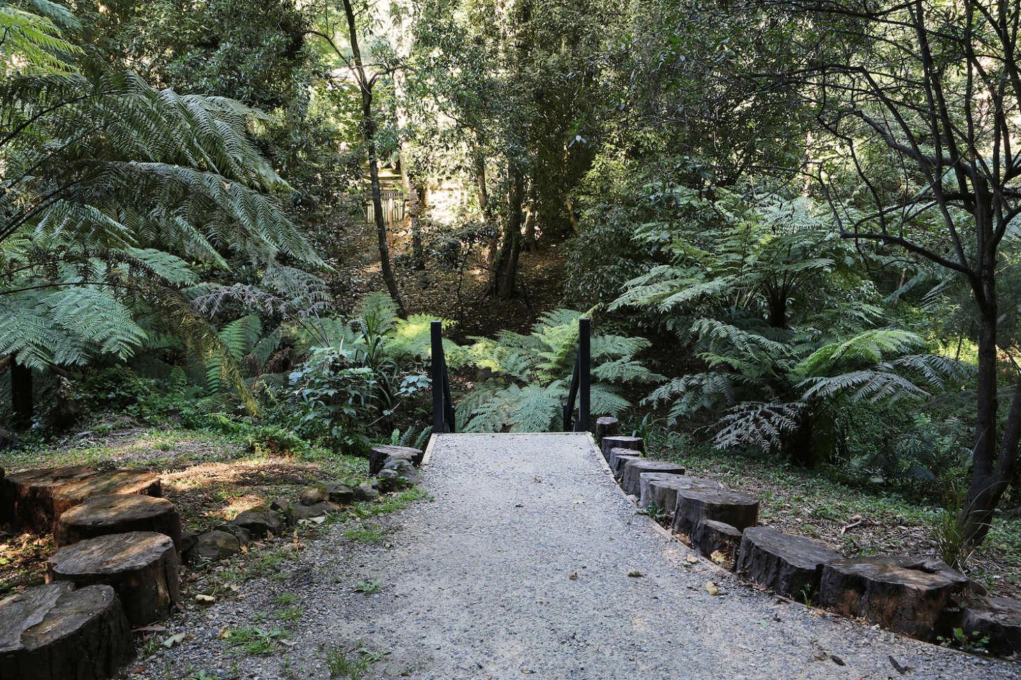 Afterthe half-acre landscape became Jacky Winter Gardens, Mueller was &#8
