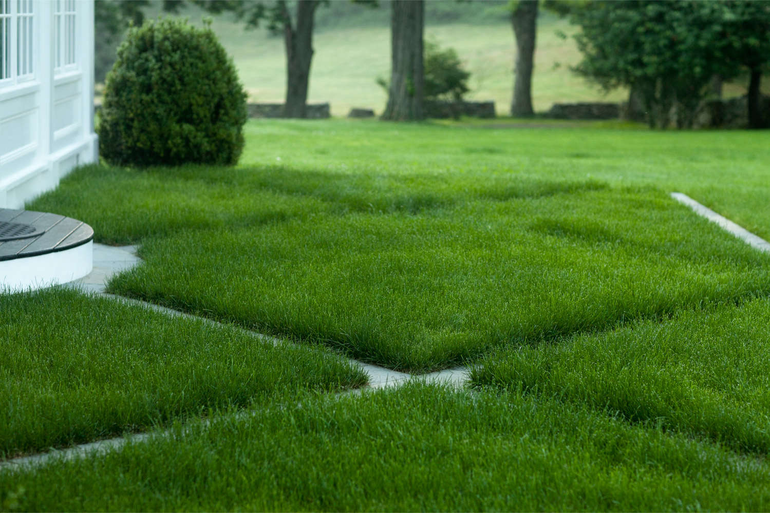 Ask The Expert 8 Ways To Add Pattern To A Landscape Gardenista