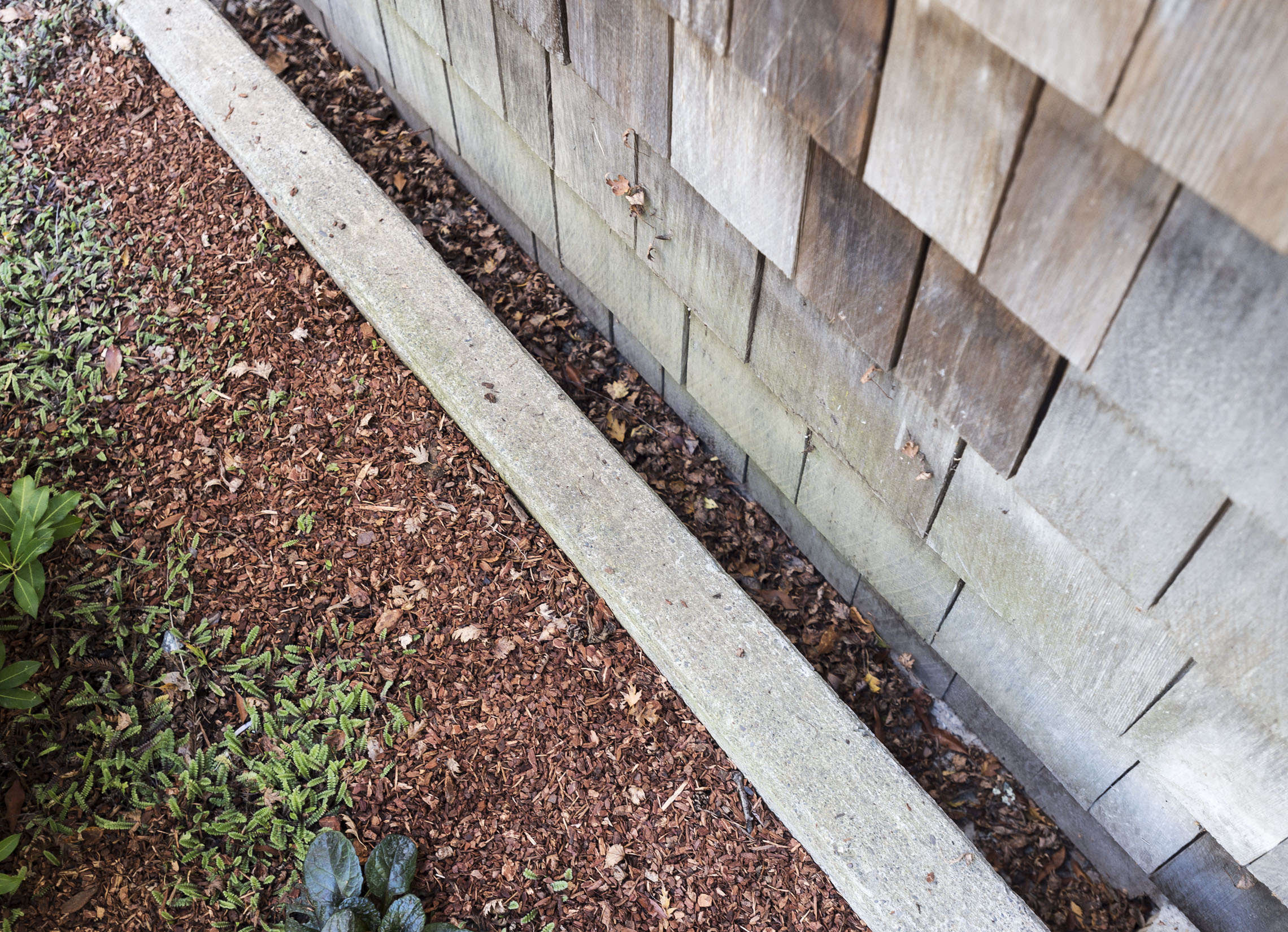 Hardscaping 101: French Drains - Gardenista