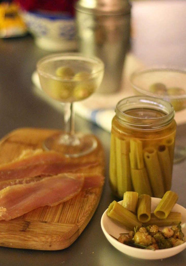 japanese knotweed pickles_marie viljoen