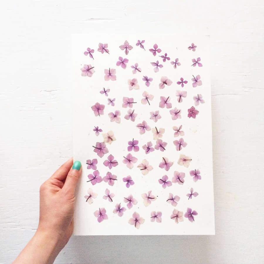 Diy Tips To Press Flowers From Mr Studio London Gardenista