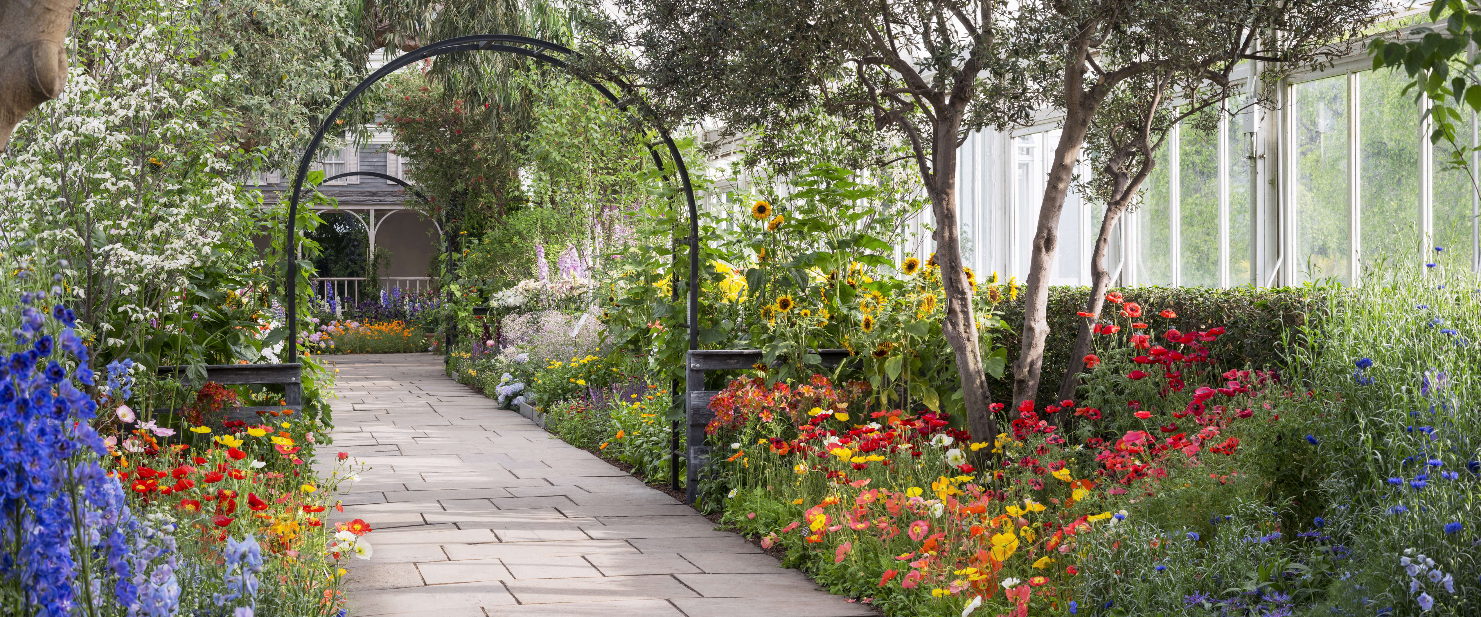 visit to a botanical garden