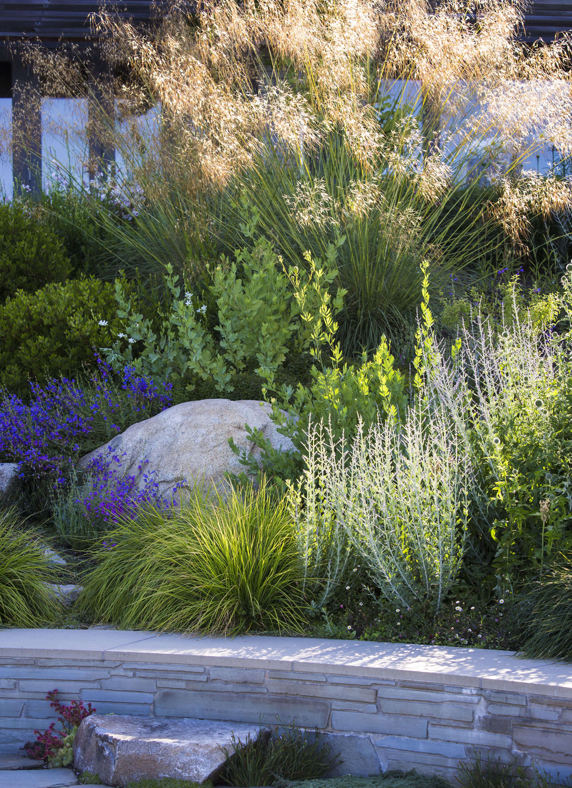 Above: Behind A Retaining Wall Is A Palette Of Purple, Yellow, And White  Flowering Perennials, Their Colors Thrown Into Relief By Clumps Of  Perennial ...