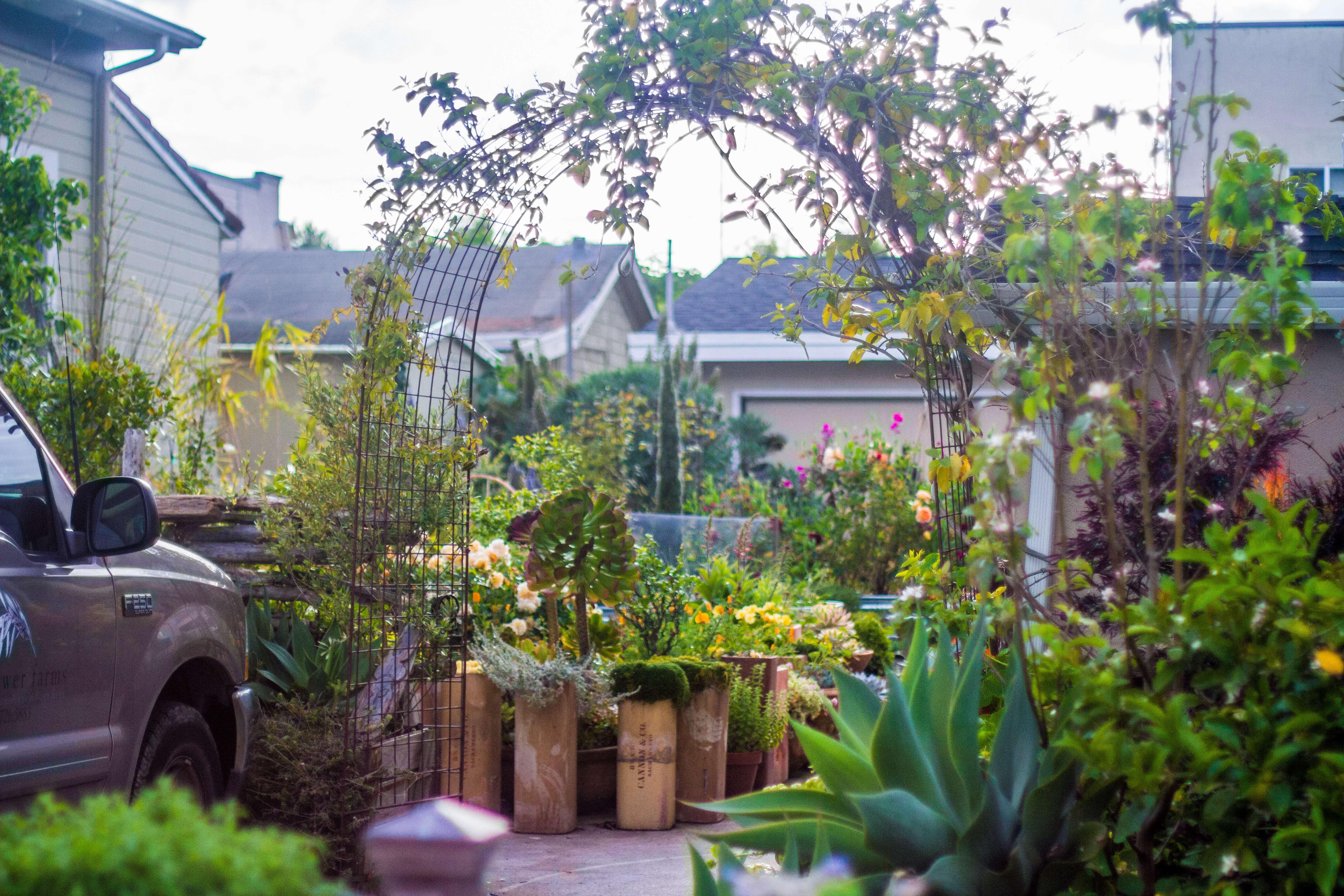 Superb Garden Visit: My Driveway Oasis In Half Moon Bay, California