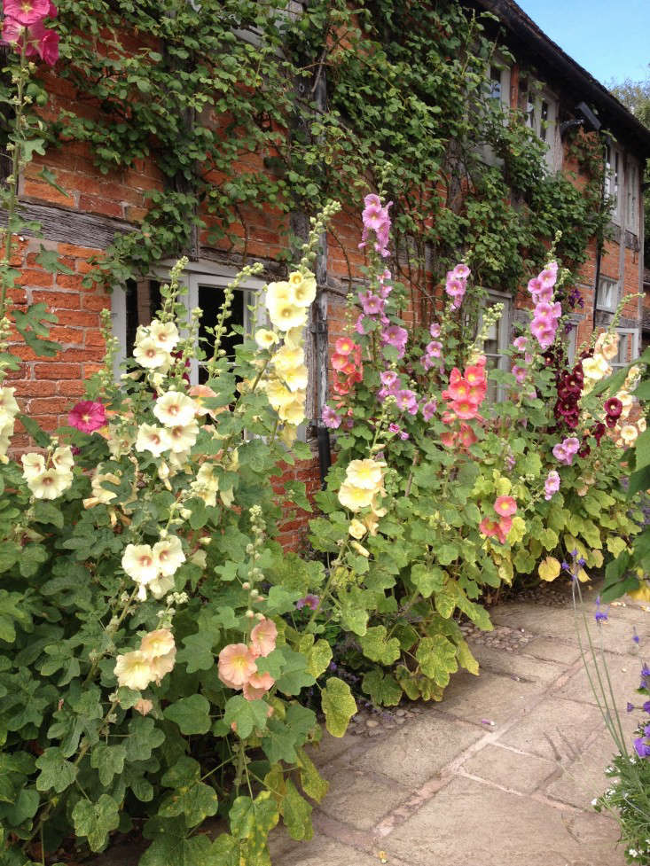 10 Garden Ideas To Steal From Wollerton Old Hall In