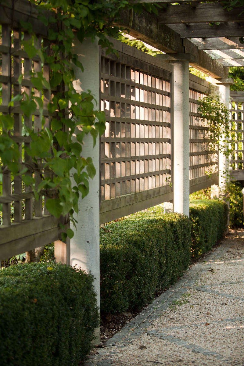 Trellis ideas for privacy - Architects Garden Privacy Screens Gardenista