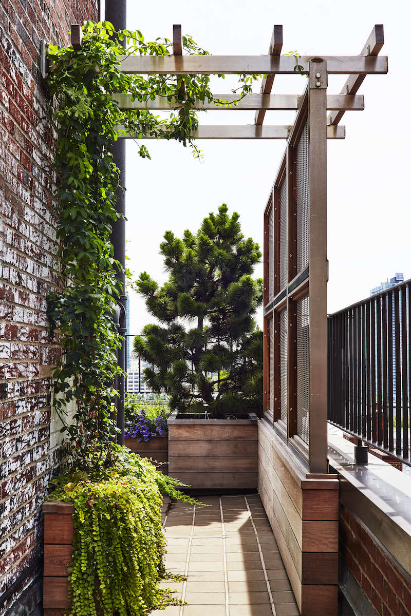 Architecture Ideas Part - 46: We Turned To Members Of The Remodelista + Gardenista Architect/Designer  Directory For Their Outdoor Privacy Solutions: