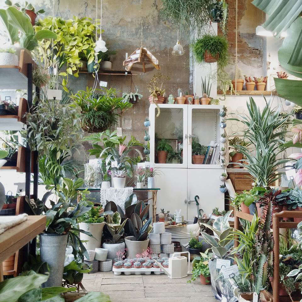 Shopper\'s Diary: Conservatory Archives in East London - Gardenista