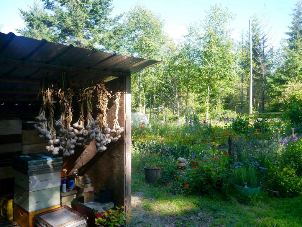 garden visit honey grove cottage in the firs on vancouver island - Garden Sheds Vancouver Island