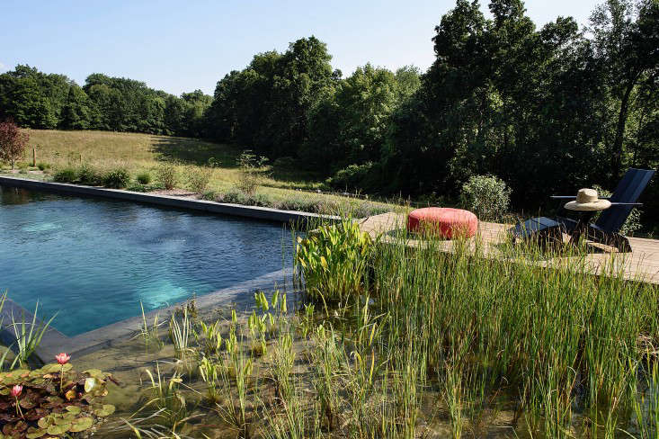 Hardscaping 101 natural swimming pools gardenista for Hudson swimming pool timetable