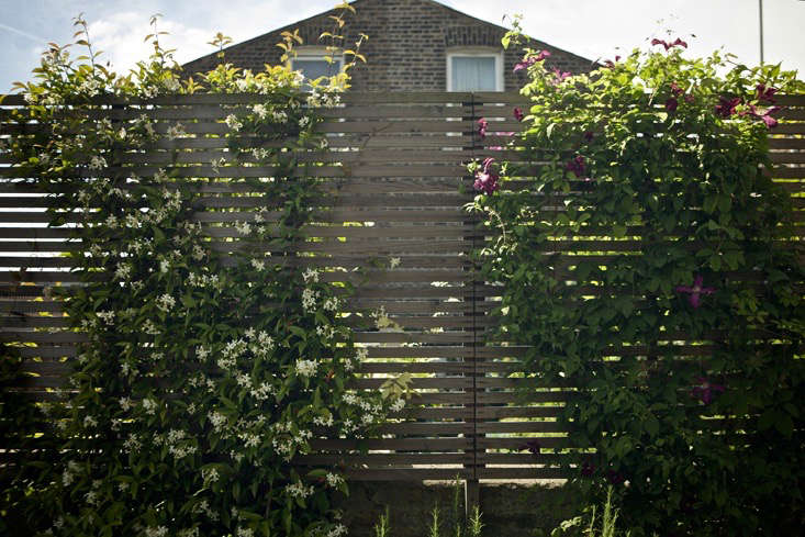 Lessons Learned From Quot Neglected Quot Slope To Charming Garden