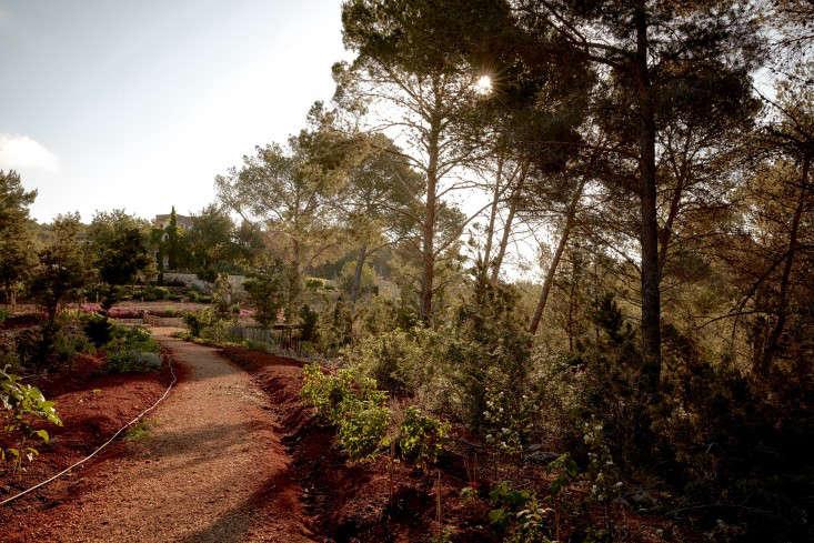 hotel-La-Granja-ibiza-path-gardenista