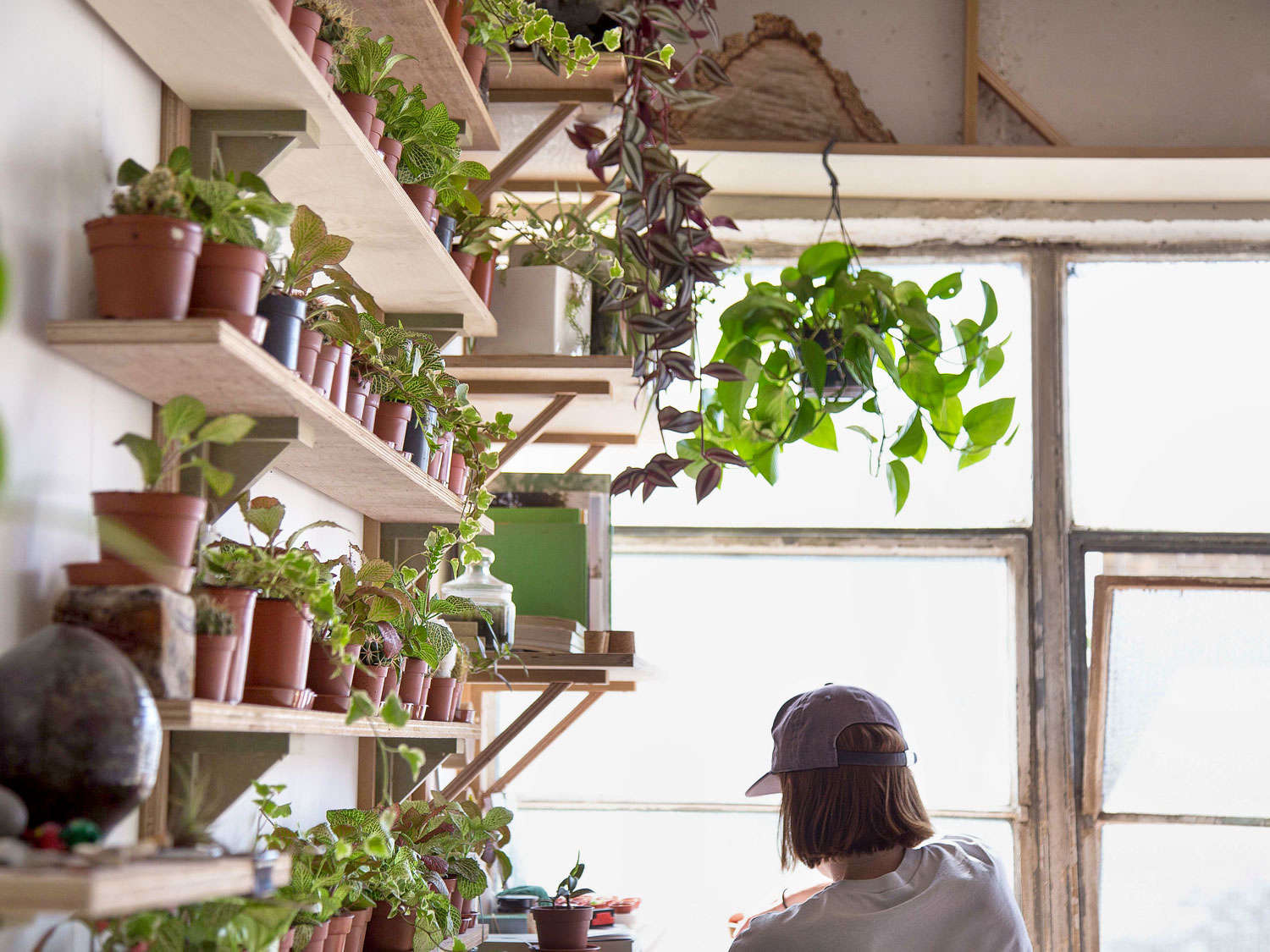 Studio Visit Gardening Under Glass With Emma Sibley Of London