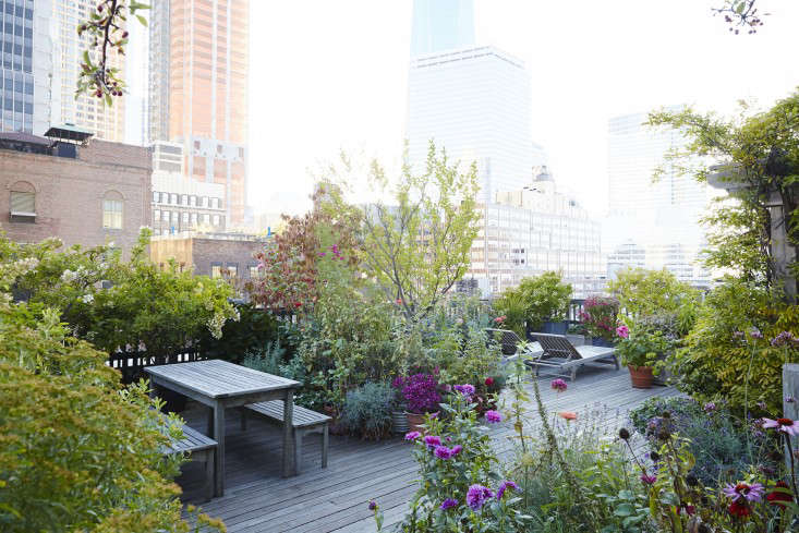 Manhattan Roof Garden Outdoor Furniture Perennials Gardenista