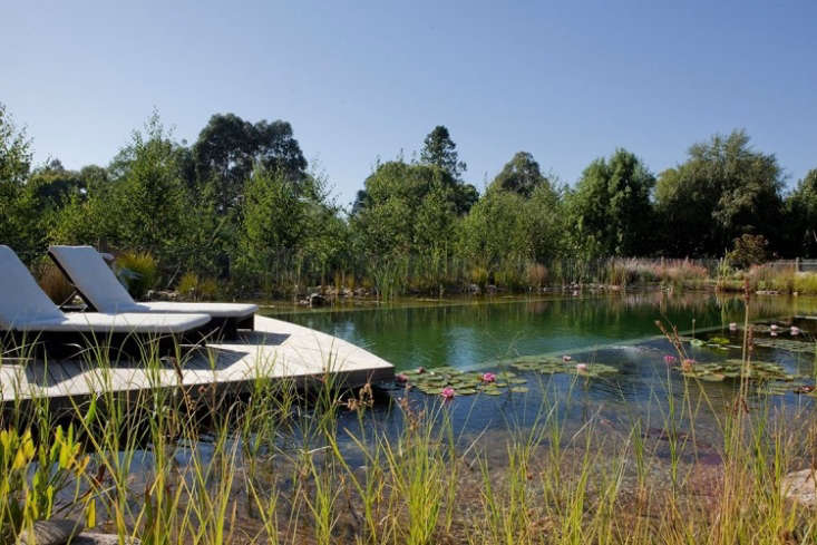 Hardscaping 101 Natural Swimming Pools Gardenista