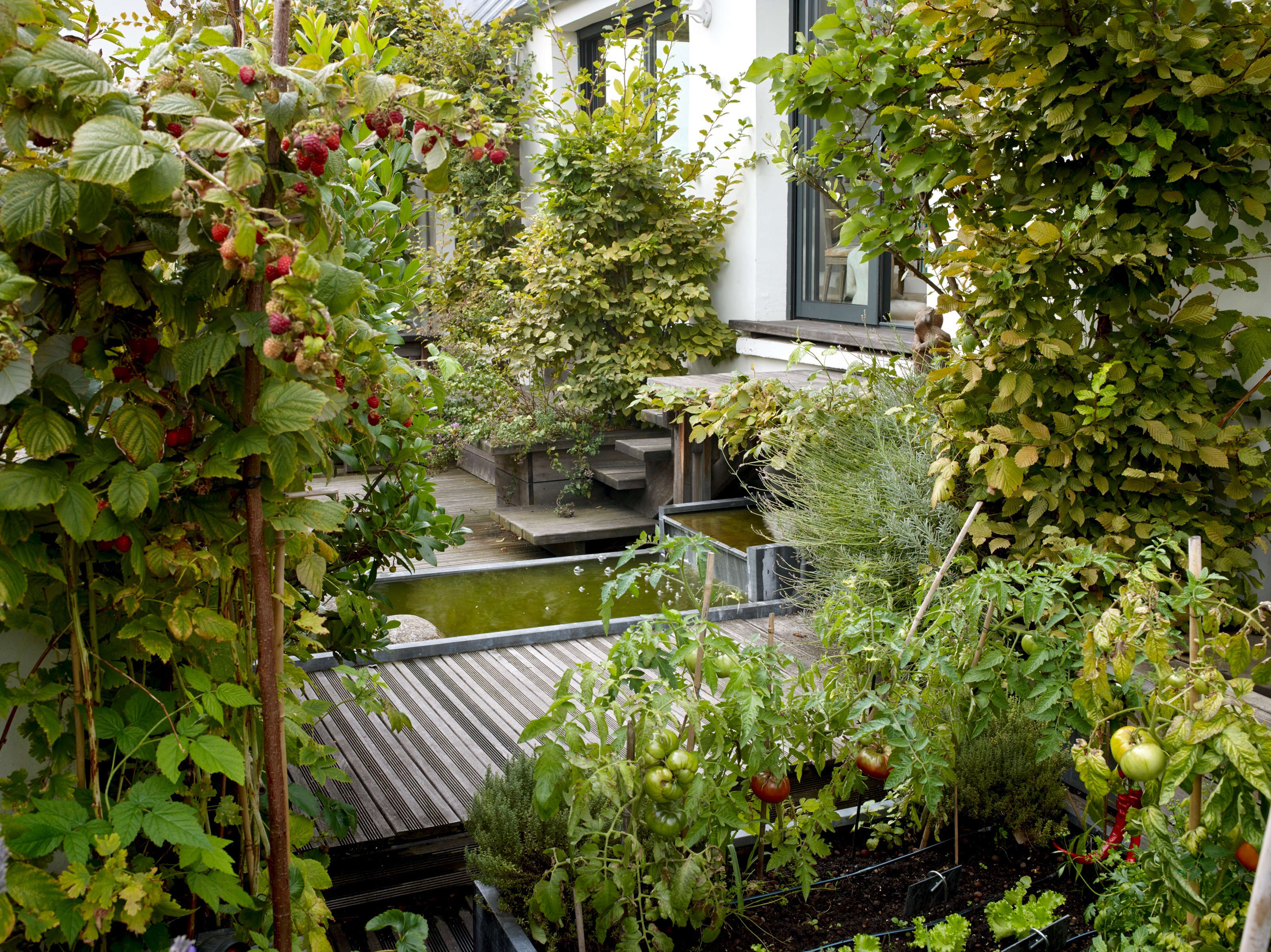 Secret Garden: Secret Paris: A Tiny Roof Garden With An Eiffel Tower View