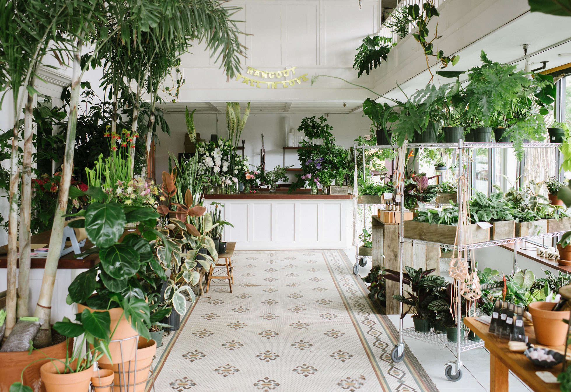 Shoppers Diary A Drugstore Vintage Vibe At Solabee Flowers In