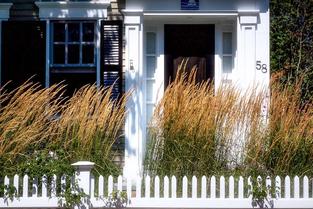 10 Ideas to Steal From P-Town Gardens, grass screen, Gardenista