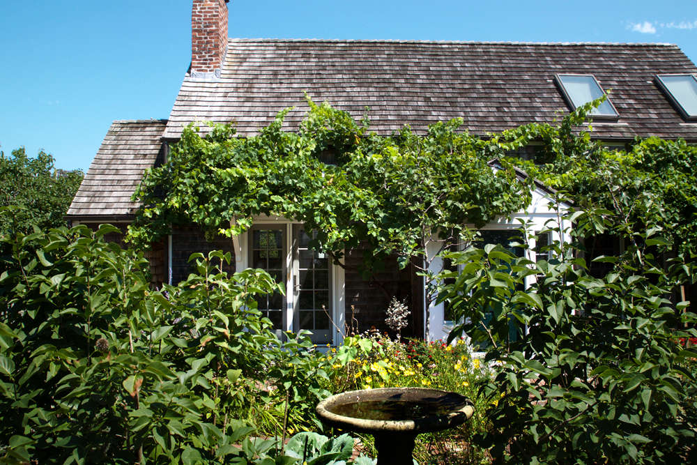 10 Ideas to Steal for Gardens of Ptown, grape arbor cottage, Gardenista