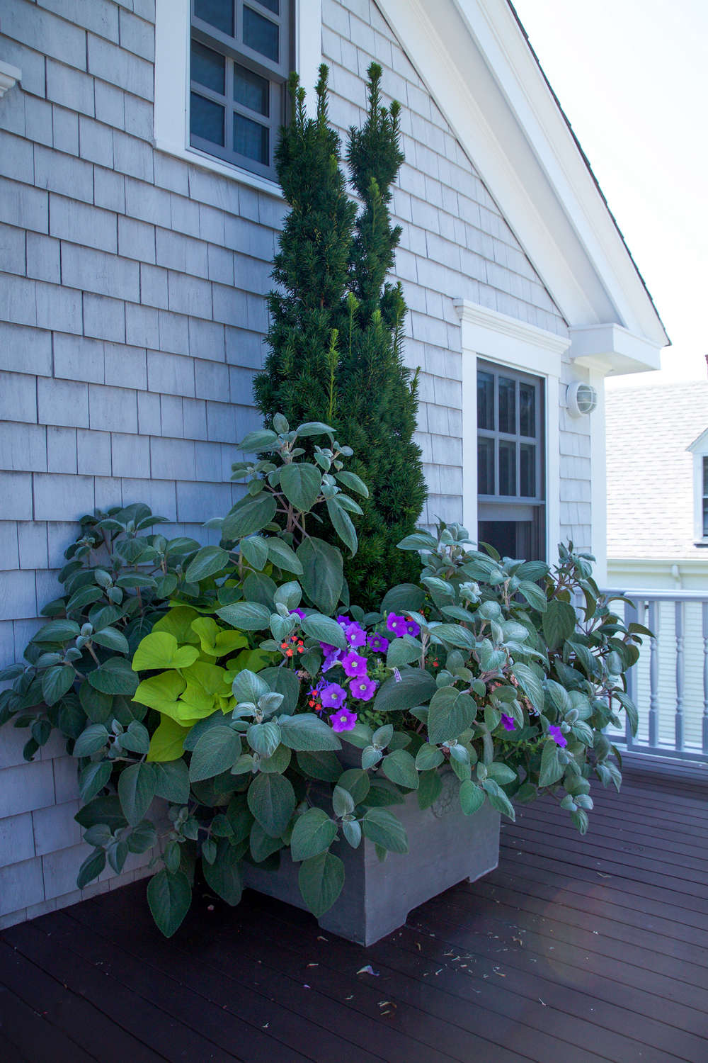 10 Ideas to Steal from Ptown Gardens, supersized planters, Gardenista