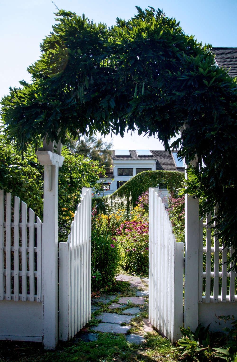 10 Ideas to Steal from Ptown Gardens, wisteria arch, Gardenista