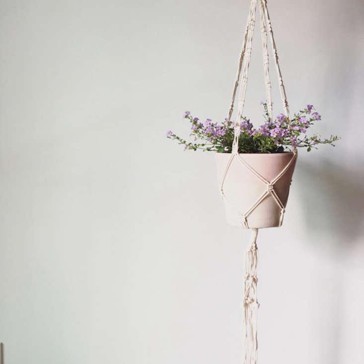 10 Easy Pieces Macrame Plant Hangers Gardenista