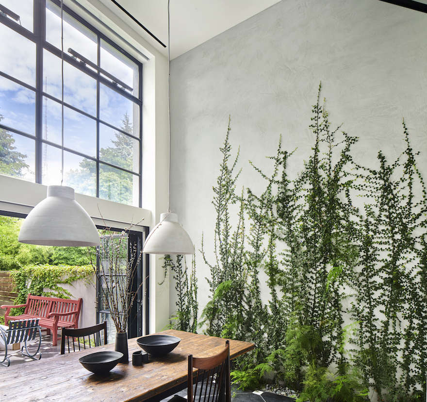 Green Wall Garden in Brooklyn by Kim Hoyt   Gardenista. Architect Visit  A Dining Room Wallpapered with Climbing Vines in