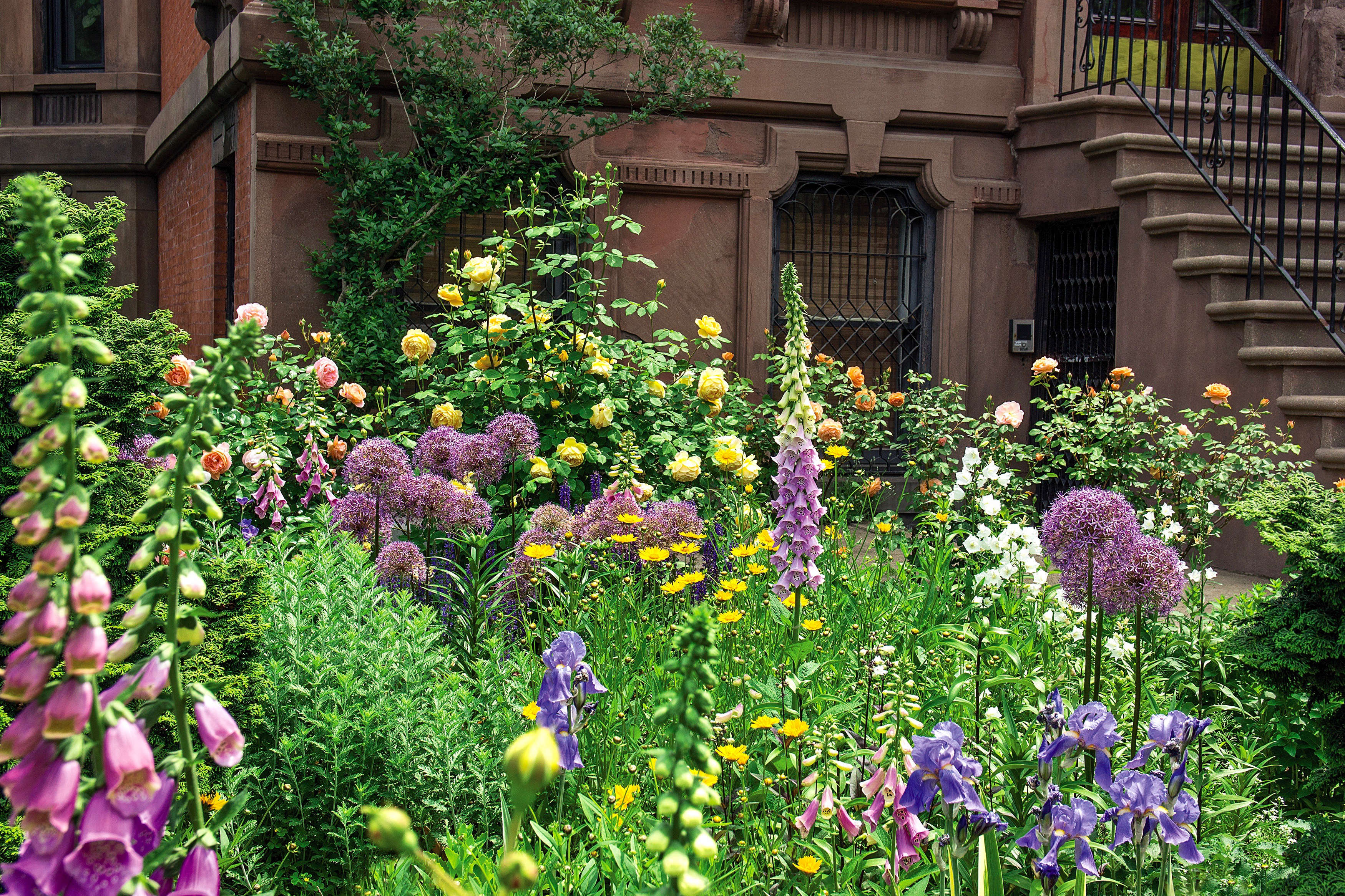 Required Reading: Sidewalk Gardens of New York - Gardenista on sidewalk landscape design, sidewalk pavers, sidewalk planting, sidewalk gardening ideas, sidewalk vegetable garden design, sidewalk lighting ideas, sidewalk paving ideas, sidewalk decorating ideas,
