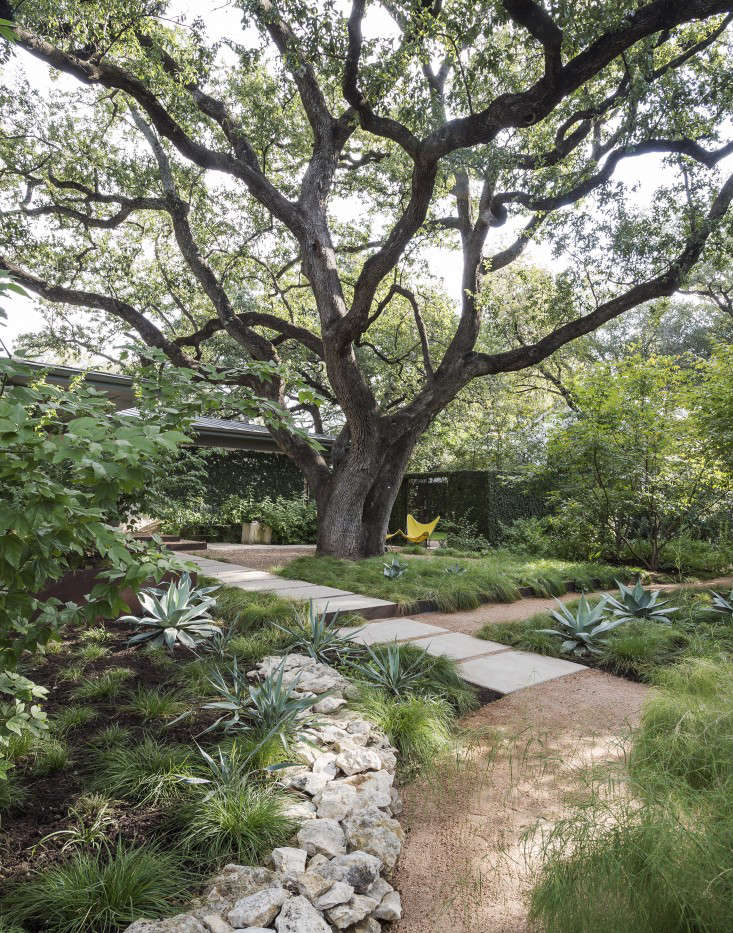 Drought Tolerant Garden Design trends in backyard design whats hot now hgtv A Massive Live Oak In Austin Shades The Front Garden Of Landscape Architect Christine Ten Eyck