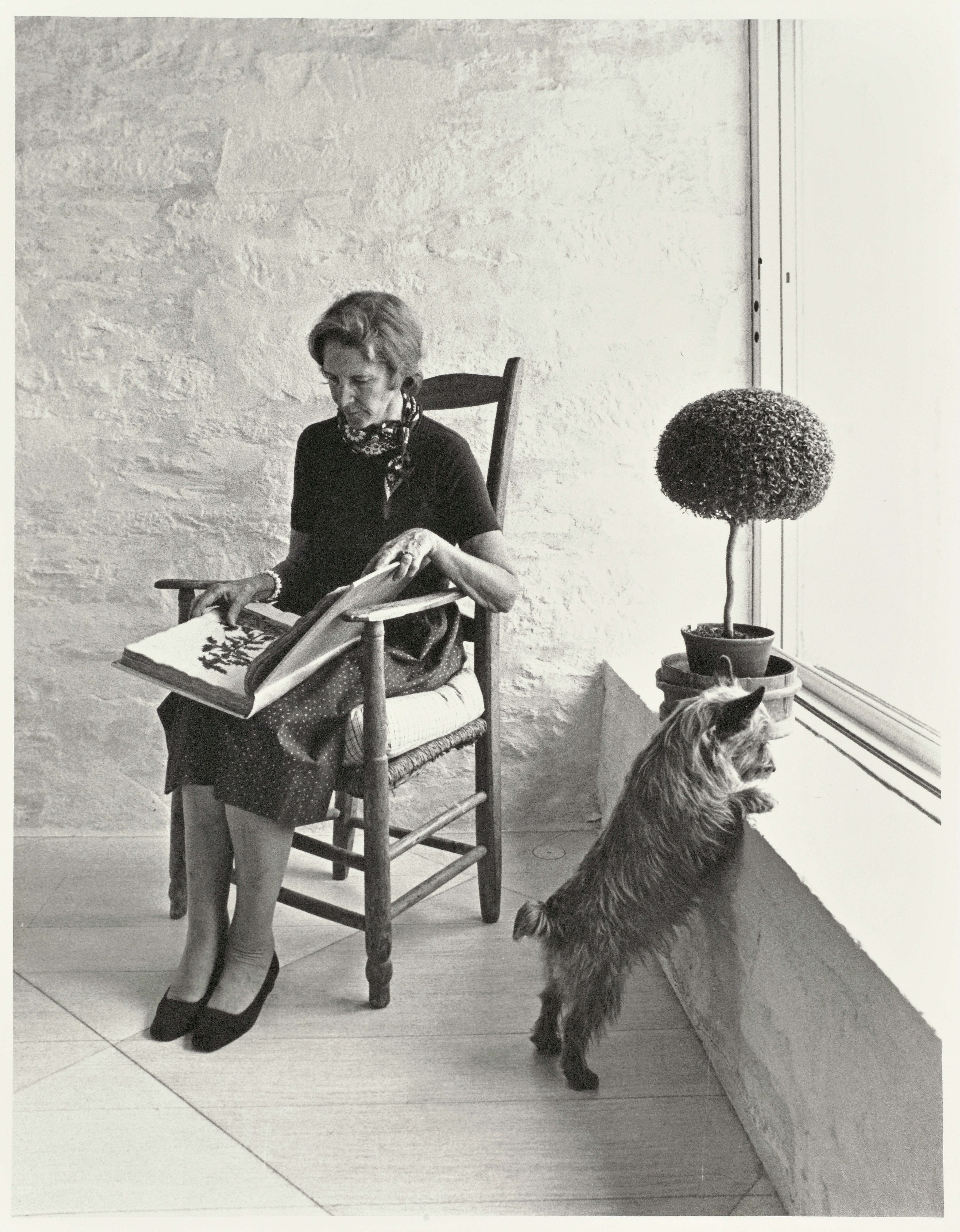 From Redouté to Warhol: Bunny Mellon\'s Wandering, Acquisitive Eye ...