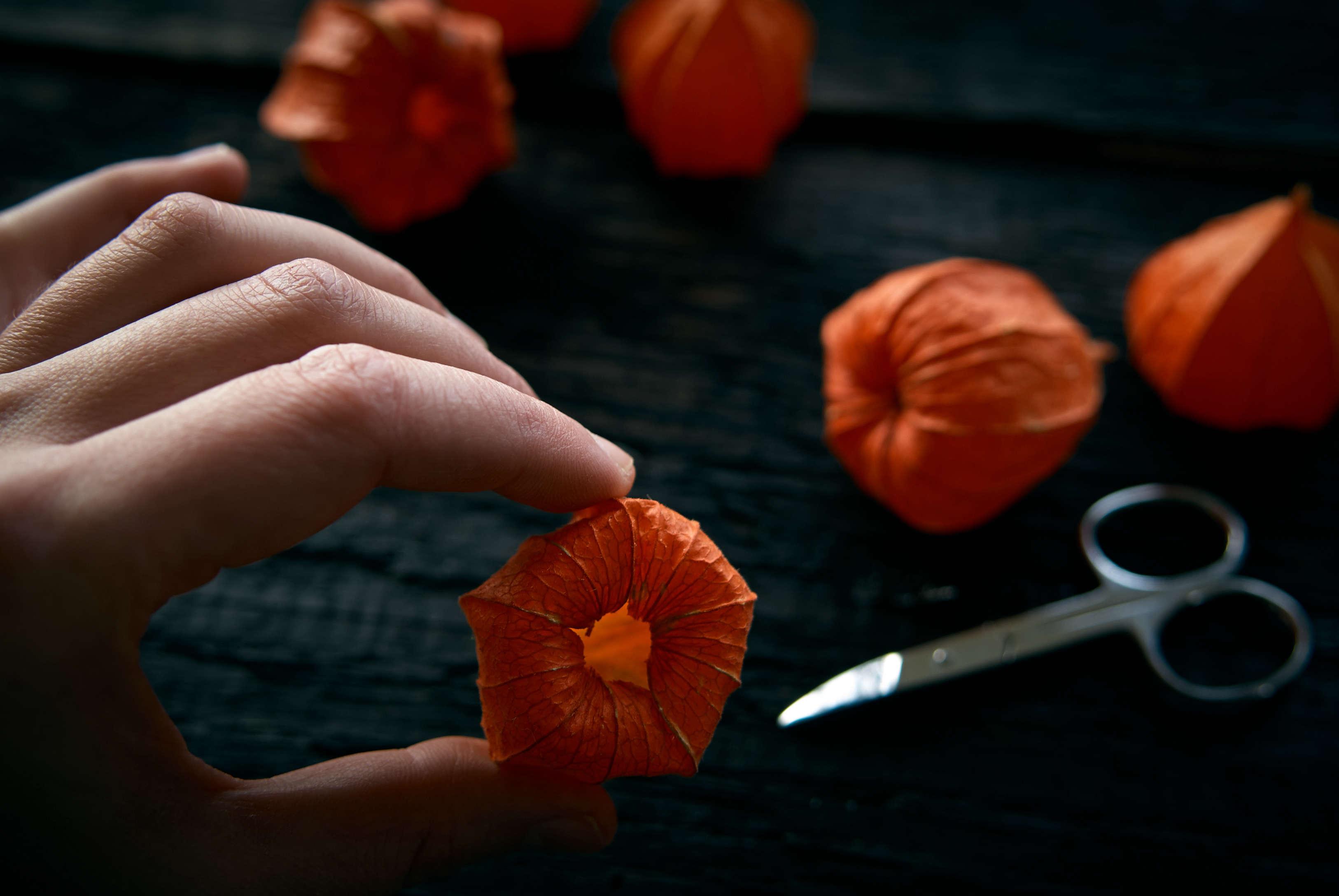 DIY: Pumpkin Lights Without the Plastic - Gardenista