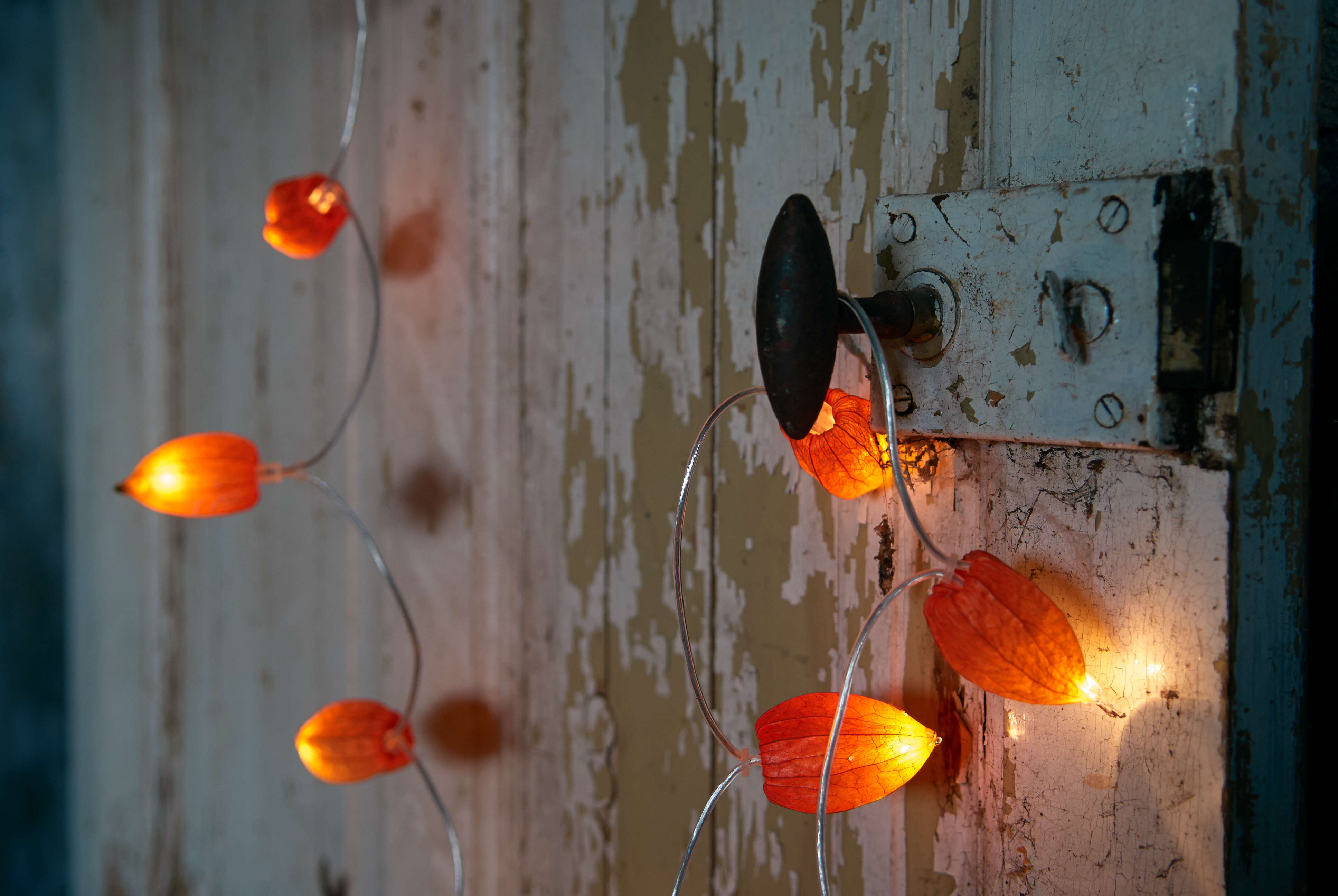 DIY: Pumpkin Lights Without the Plastic - Gardenista