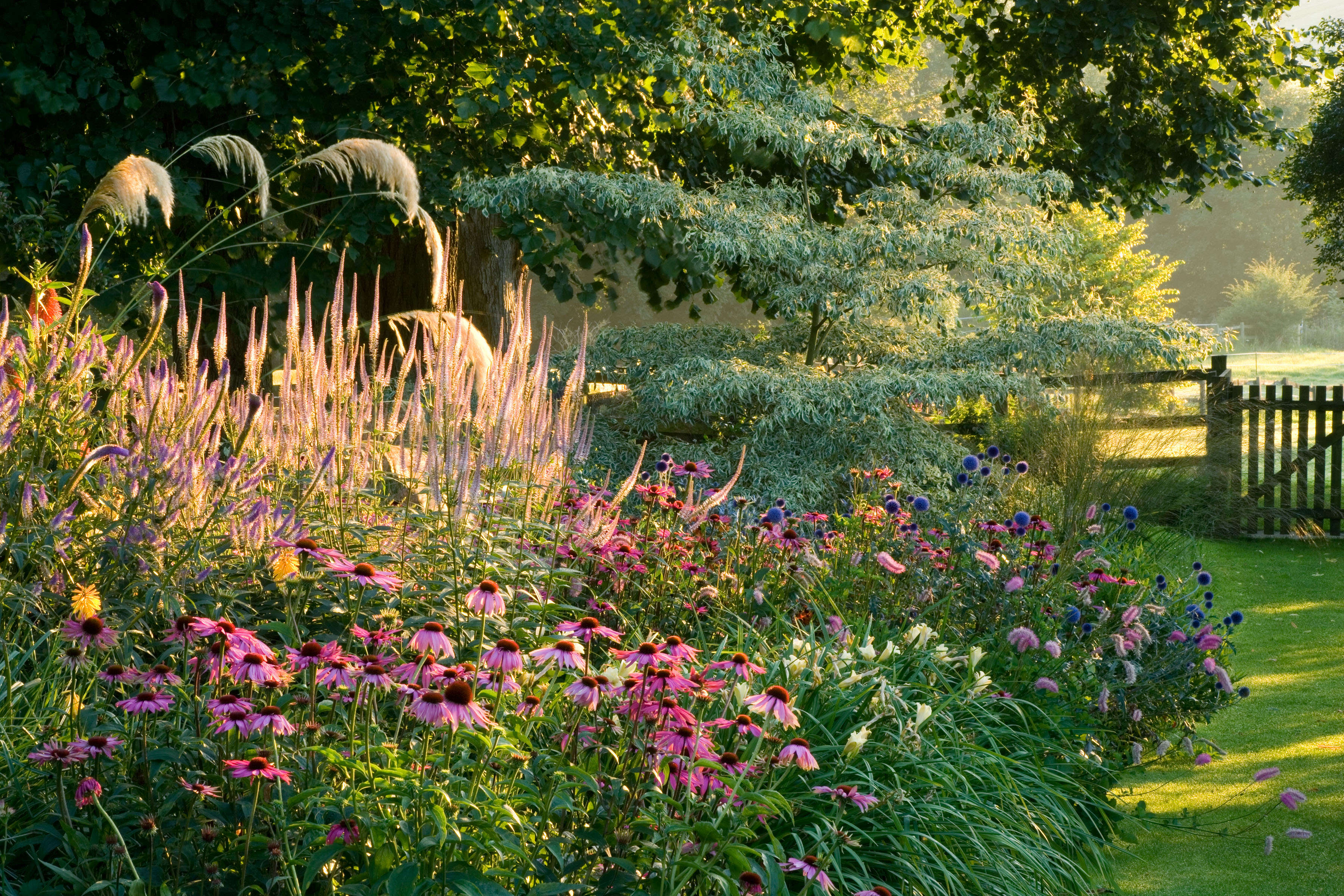 Expert Advice 9 Tips To Take Better Pictures From Garden