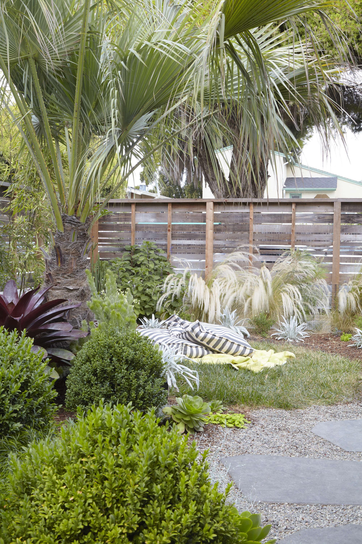 Landscape Designer Visit: At Home With Flora Grubb In Berkeley, CA    Gardenista