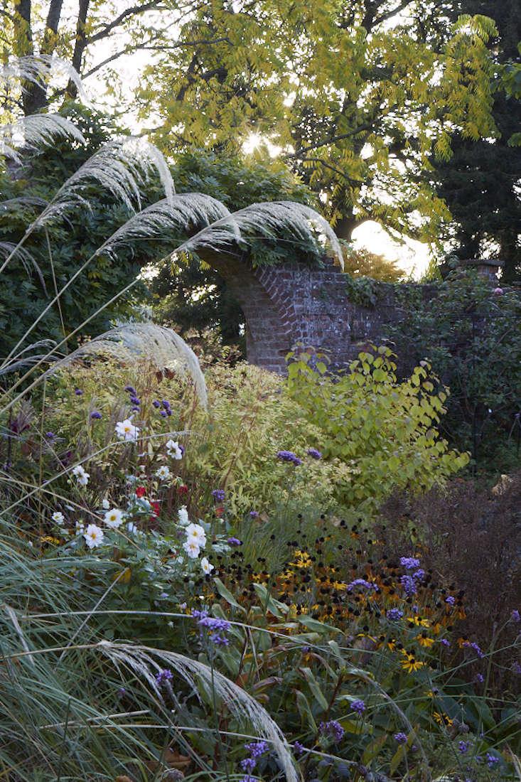 在花园里,花园中的花园,《西格菲尔德》,《拉格尔顿》,包括《拉格拉斯》,包括《拉格拉斯》,以及《拉格拉斯》,而不是《拉德维夫》。除了它和其他的,还有身体。水是一种花园的花园。而且它还能支撑着高的,但有一颗高的脚,还有一根脚的天花板。用一棵树,在草地上,用一条小草地,就像在草地上的杂草一样。来自维特纳·维斯顿的照片。