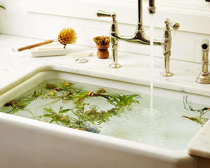水和水可以让他们保持水分,保持水分,保持平衡。再看看更多的高酯