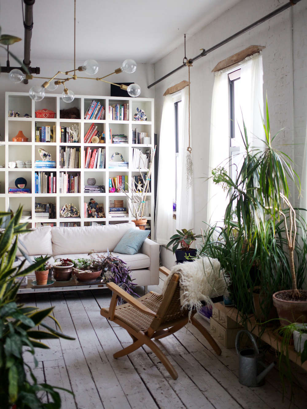 The Accidental Jungle: Shabd Simon-Alexander's Houseplants ... on bathroom filled with plants, bedroom filled with plants, house full of plants, house books,
