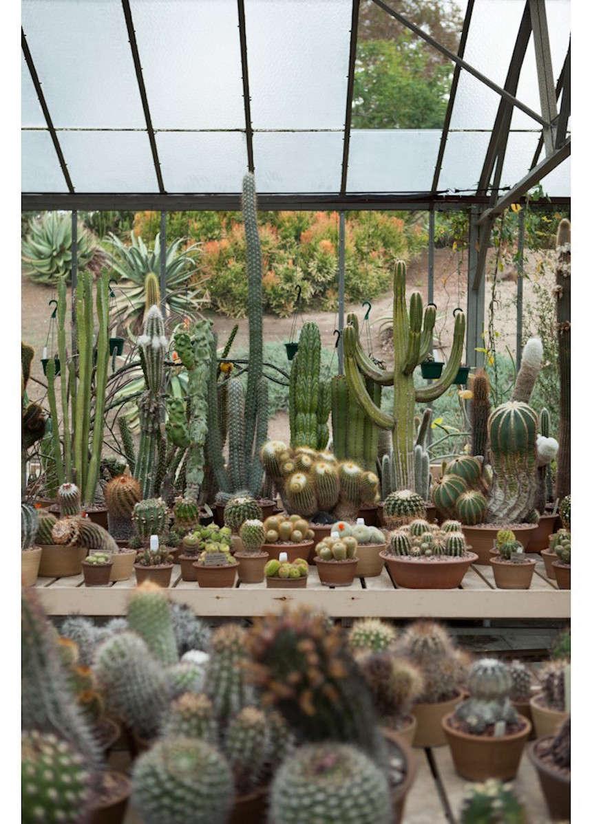 Huntington garden greenhouse 10 laure joliet gardenista