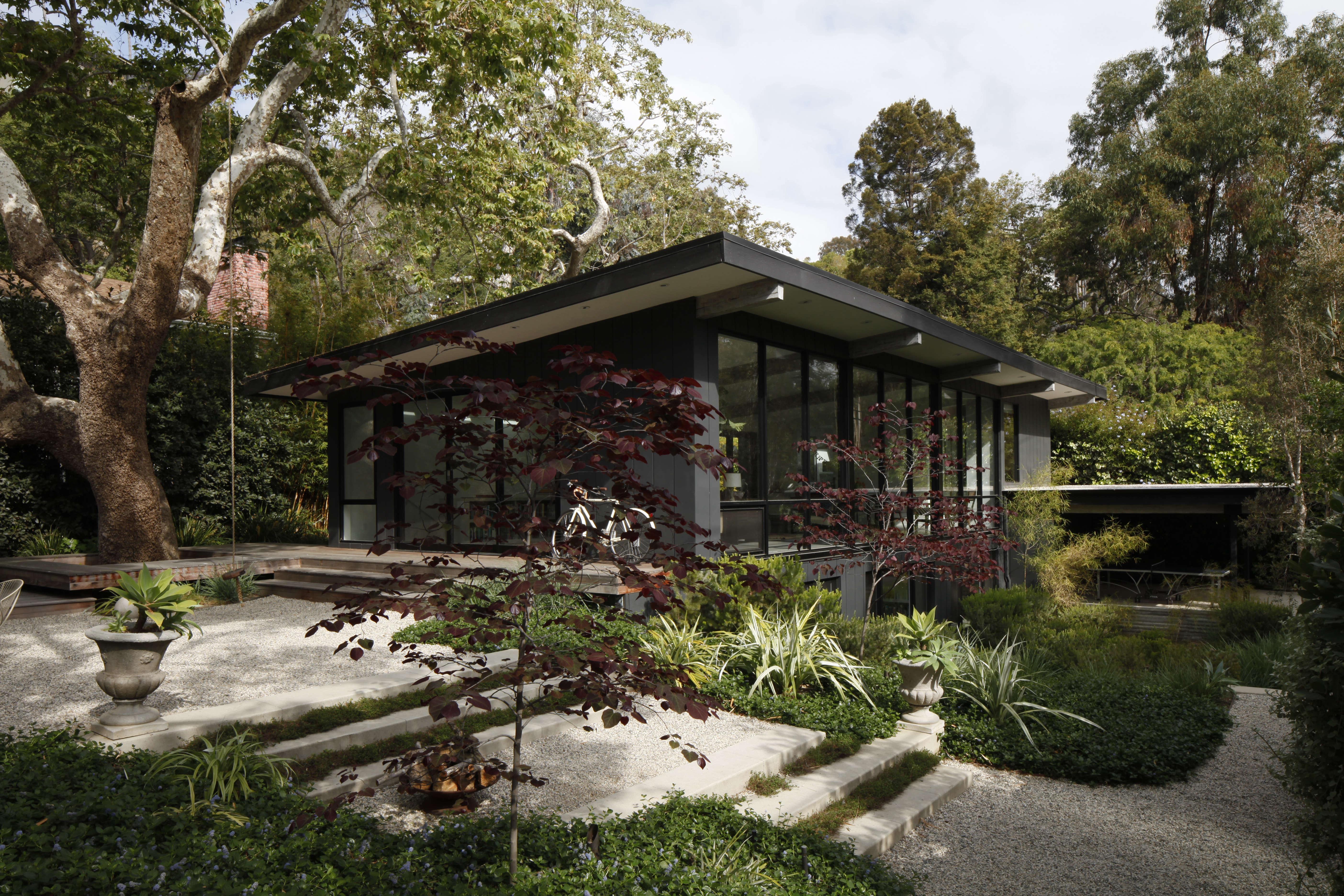 Landscape Architect Visit: A Majestic Sycamore In A Santa Monica Garden    Gardenista