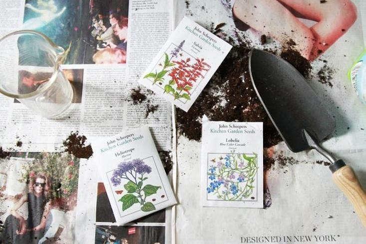 11 Garden Ideas To Steal From Martha Stewart Gardenista