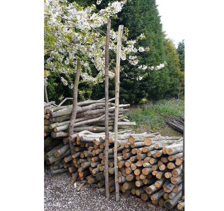 chestnut-bracing-rails-natural-fencing
